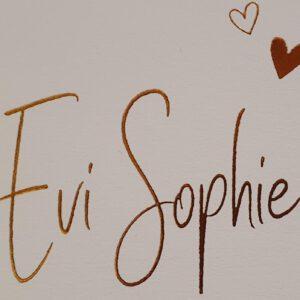 Evi Sophie Hillenga Babynamen Meisjesnaam